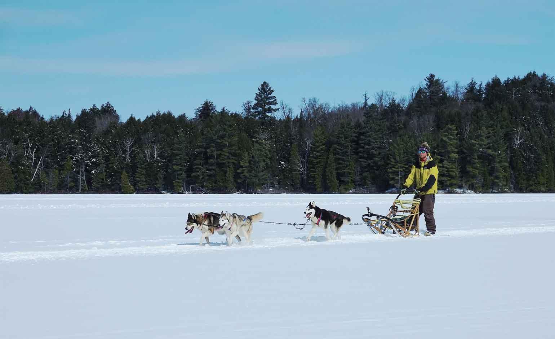広大な凍った湖の上へ、大冒険!