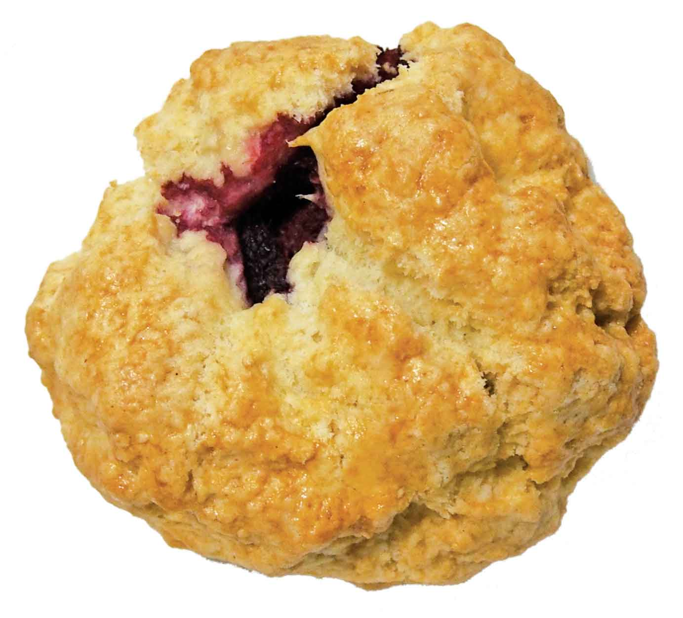 What a Bagel's  Cranberry  Scone