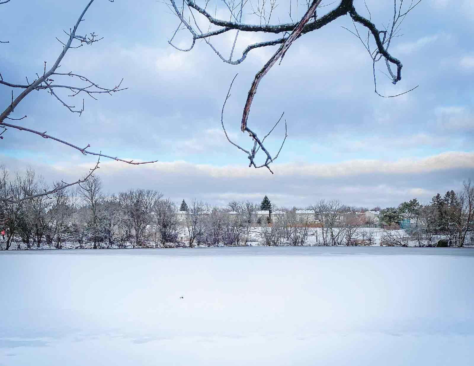 オースティン・パークの奥にあるワルドン池