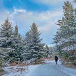 歴史遺産の街、ユニオンビル(Unionville)―散策とハイキング |紀行家 石原牧子の思い切って『旅』第50回