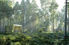 大自然にあるキャビンに滞在できる自然体験型宿泊施設が登場 トロントのトレンドを追え!WHAT'S HOT